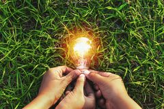 three hand holding light bulb on grass. eco concept power energy stock photography