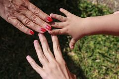 Three hands of family: son, mother and grandmother. stock images