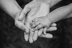 Three hands of the same family - father, mother and baby stay together. Close-up. The concept of family unity, protection, support, prosperity, love and Royalty Free Stock Photography