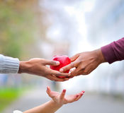 Three hands sustaining a red apple. An image of three hands, giving or receiving an apple stock images