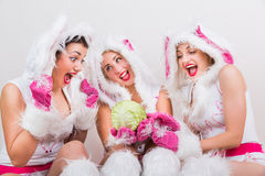 Three handsome girls in rabbit costume feel excited looking at cabbage Stock Image