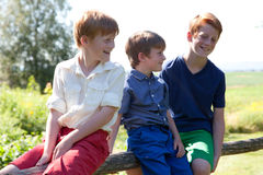 Three happy brothers sitting on fence Royalty Free Stock Photography