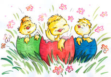 Three happy chickens Stock Images