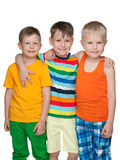 Three happy little boys Stock Image
