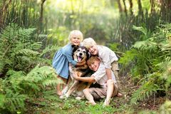 Three Happy Children Lovinglt Hugging the Pet Dog in the Forest stock image