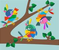 Three happy parrots Royalty Free Stock Photo