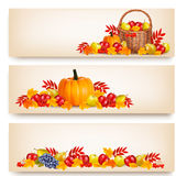 Three Happy Thanksgiving Banners. Stock Images
