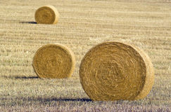 Three hay bales Royalty Free Stock Photography
