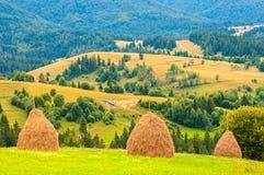Three haystacks on beautiful summer plateau in Carpathian mountain stock images