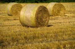 Three haystacks. On the field Royalty Free Stock Image