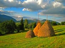 Three Haystacks in a Field stock photo