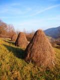Three haystacks prepared on meadow royalty free stock photos