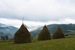 Three haystacks in the Ukrainian Carpathians Royalty Free Stock Image