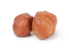 Three hazelnut kernels Royalty Free Stock Photography