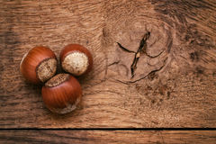 Three hazelnut Stock Images