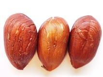 Three hazelnut seeds. Closeup look of three hazelnut seeds stock photo