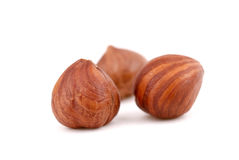 Three Hazelnuts Royalty Free Stock Photo