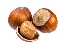 Three hazelnuts and a nutshell. Isolated picture. Three hazelnuts and a nutshell royalty free stock image