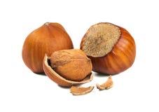 Three hazelnuts and a nutshell. Isolated picture. Three hazelnuts and a nutshell stock photo