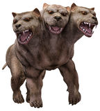 Three headed dog Royalty Free Stock Photo