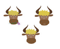 Three heads of the bull Stock Photo