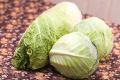 Three heads of white and chinese cabbage Royalty Free Stock Photo