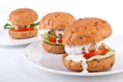 Three healthy burgers Stock Photography