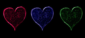 Three Heart Bokeh black Royalty Free Stock Images