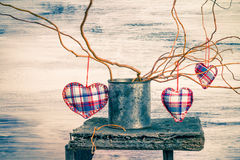 Three hearts hanging branches can Royalty Free Stock Images