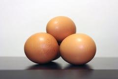 Three hen eggs Stock Photos