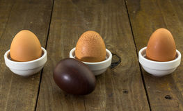 Three hen eggs in a row on rustic wood background with one wood royalty free stock photos