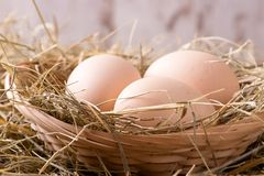 Three hen eggs in straw nest Royalty Free Stock Photos