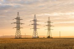 Three high-voltage poles on a wheat field in the rays of the rising sun. In Russia stock photo