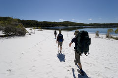 Three hikers in australia 1. Three hikers walking on a beach in australia on fraser island on a clear sunny day 1 Stock Photography
