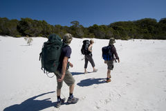 Three hikers in australia 5. Three hikers walking on a beach in australia on fraser island on a clear sunny day 1 Stock Photos