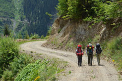 Three hikers Royalty Free Stock Photo