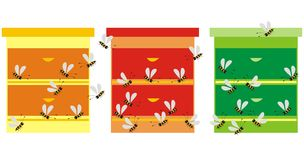 Three hives Royalty Free Stock Photo
