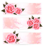 Three holiday banners with pink beautiful roses. Stock Photography