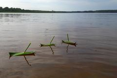 Three homemade boats from the grass float in a row on the calm surface of the lake in Finland. Handmade boat made from grass. Boats game in nature. Ship sailing Stock Photo