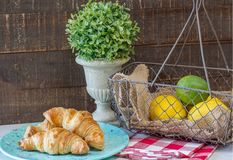 Croissants on Green Speckled Plate. Three homemade, flaky croissants on green speckled plate, boxwood topiary, wire basket of lemons and lime, against rustic stock photos