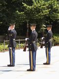 Three Honor Guards Stock Photography