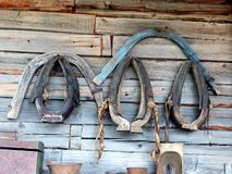 The old horse harness on a wooden wall. Closeup. Village. Ural, Russia. Royalty Free Stock Photo