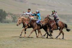 Three horses racing Stock Photos