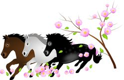 Three horses running in falling blooms of tree Stock Photos