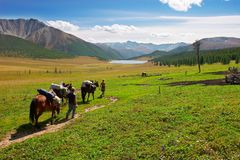 Three horses, two mens and mountains. Royalty Free Stock Images
