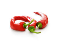 Three hot chilli pepers Stock Image