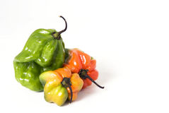 Three Hot Peppers Royalty Free Stock Photos