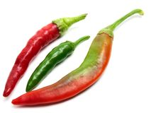 Three hot peppers Stock Images