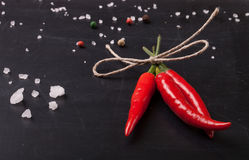 Three hot red chili pepper related by twine with sea salt and co Royalty Free Stock Photo