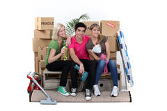 Three house-mates moving Royalty Free Stock Image
